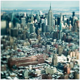 Manhattan Miniature
