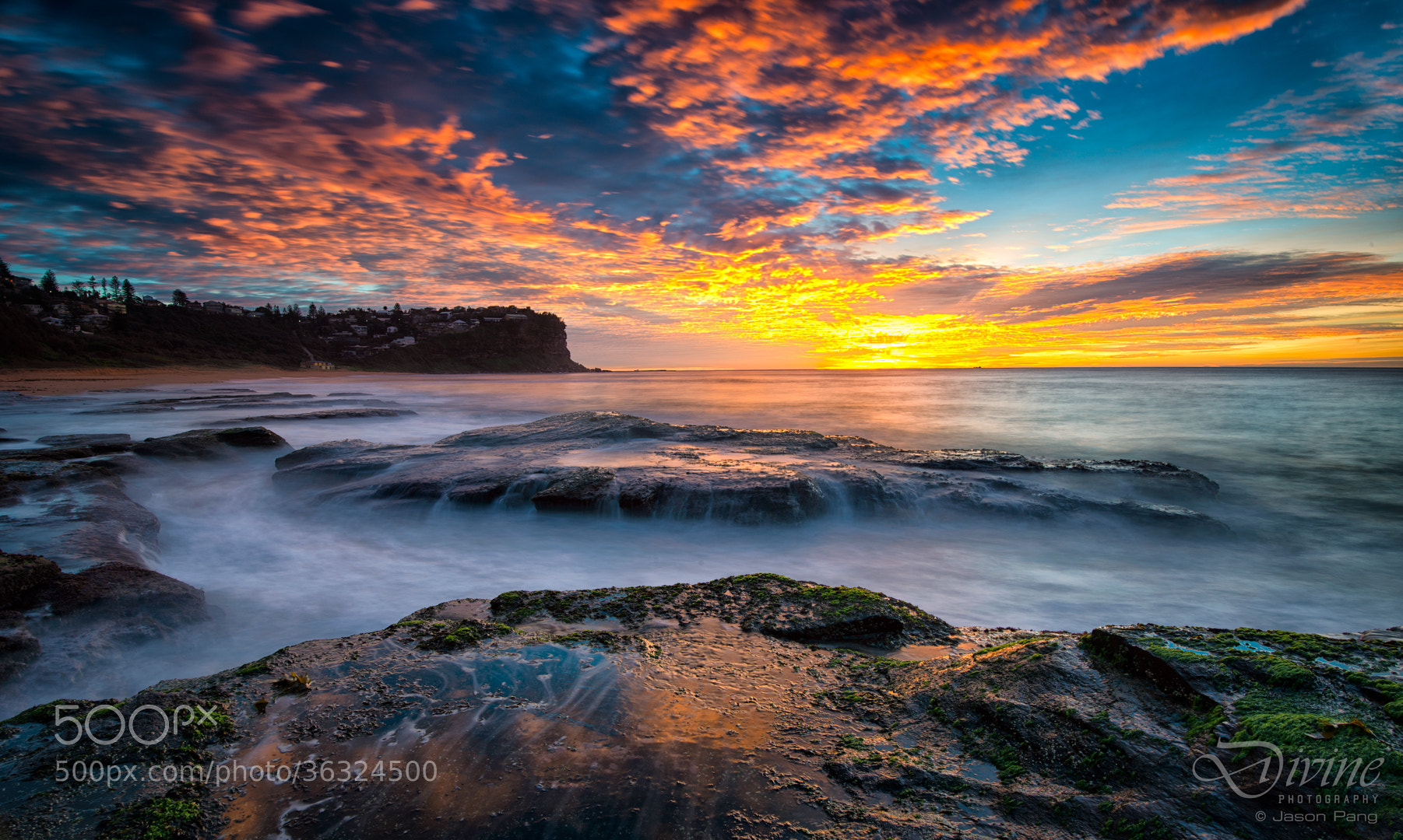 Photograph Morning Glory by Jason Pang on 500px