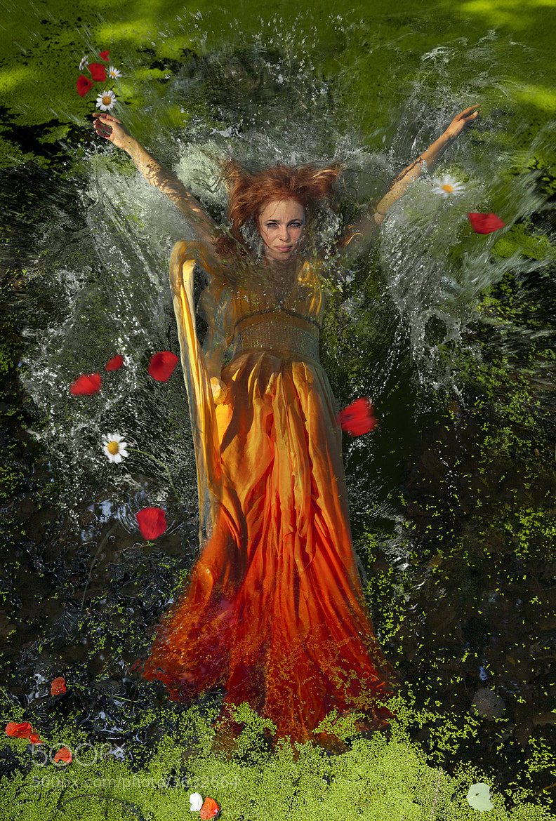 Photograph The Fall of Ophelia by Viola Krupova on 500px