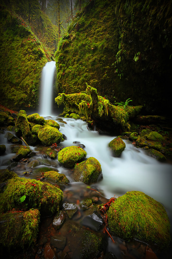 Photograph Mossy Grotto Falls I by Tula Top on 500px