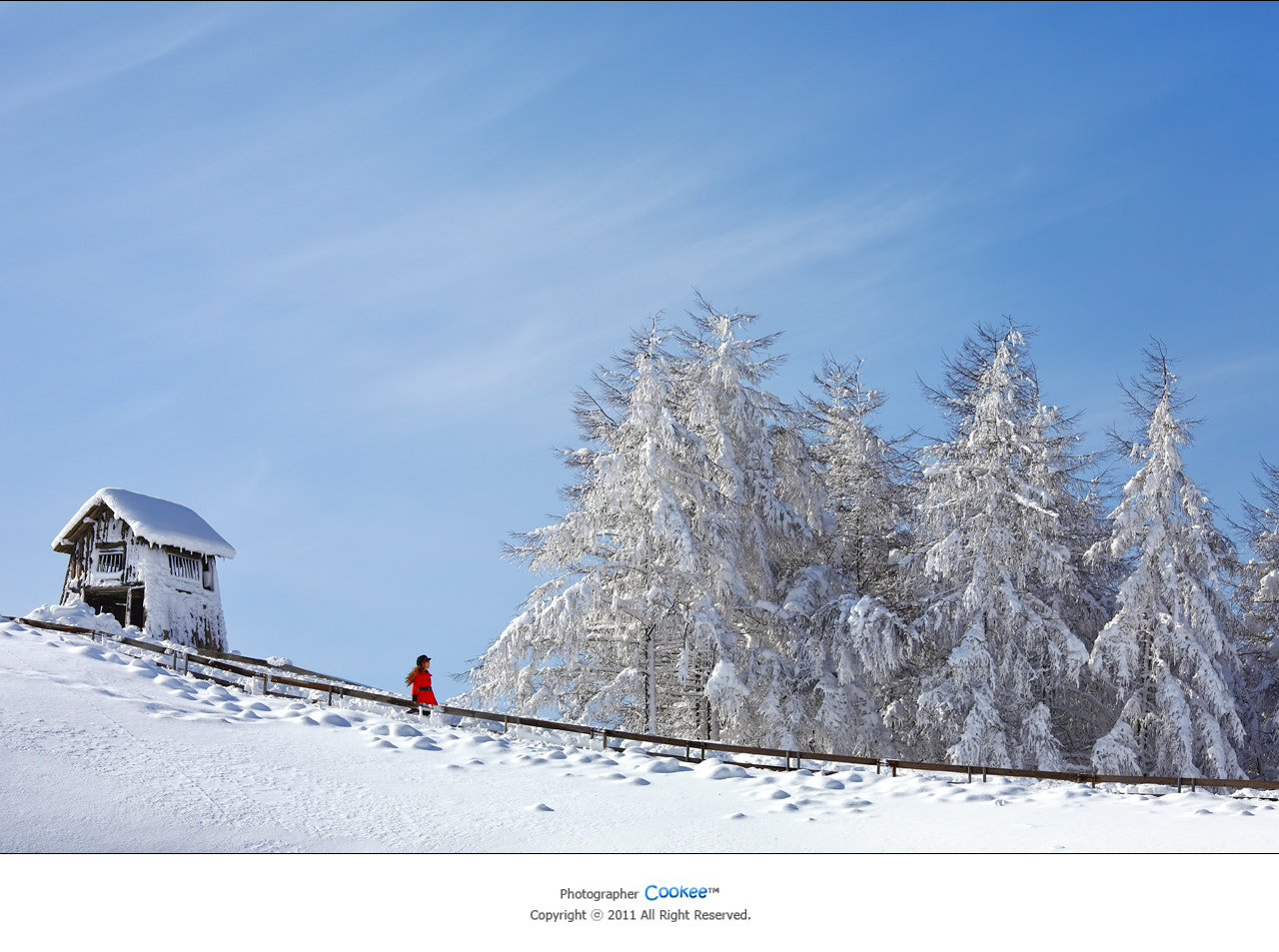 Photograph Stories of Winter by Steve Jeon on 500px