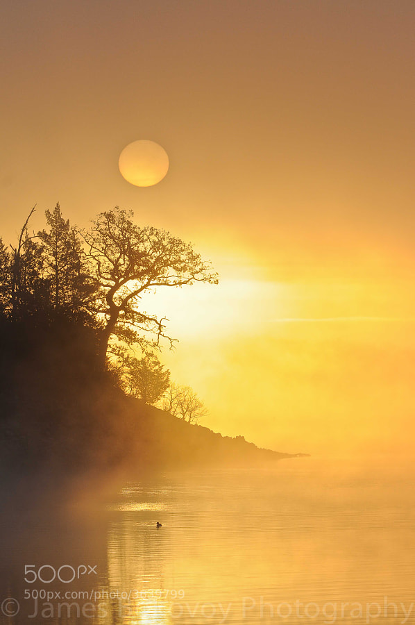 A foggy sunrise over the Lake of the Arbuckles, Sulphur, Oklahoma.