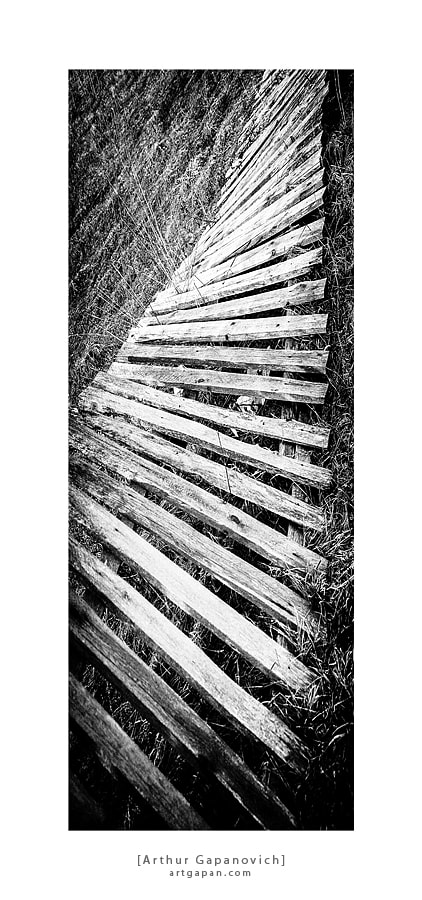 Photograph [ Stairway to Heaven ] by Arthur Gapanovich on 500px