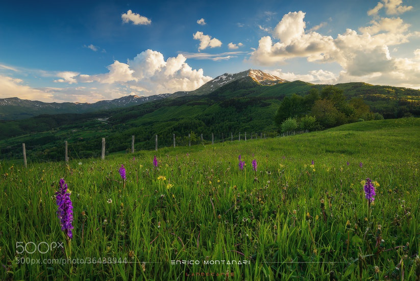 Photograph Mt. Cimone by Enrico Montanari on 500px