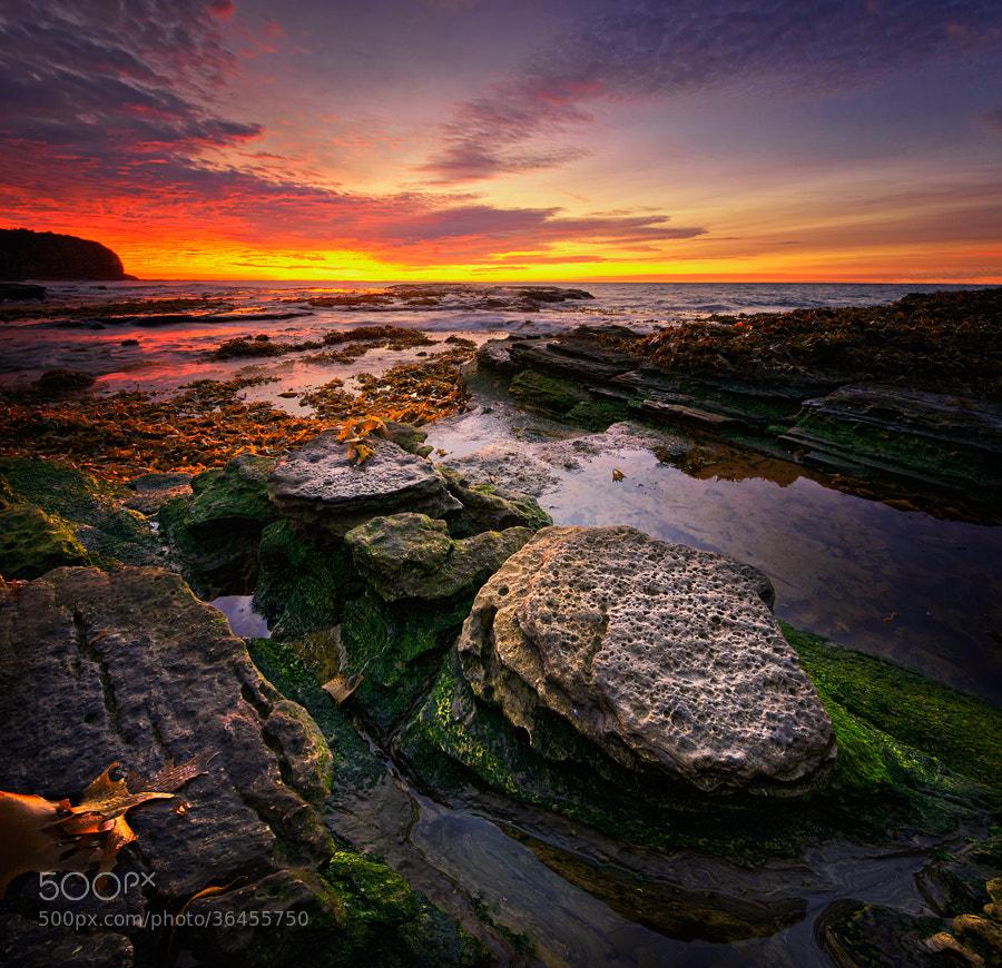 Photograph Turimetta Beach by Paparwin Tanupatarachai on 500px