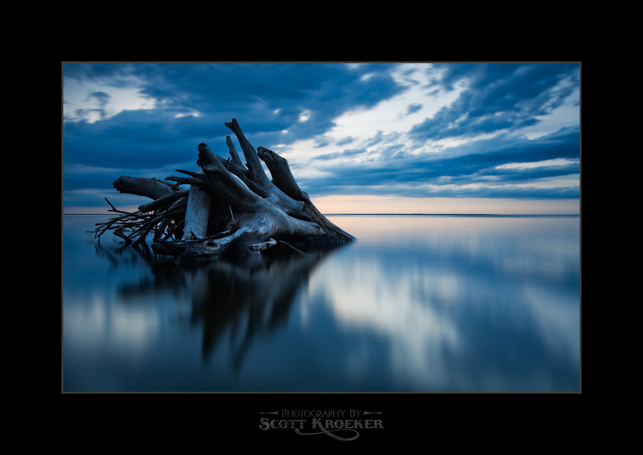 Photograph Uprooted by Scott Kroeker on 500px