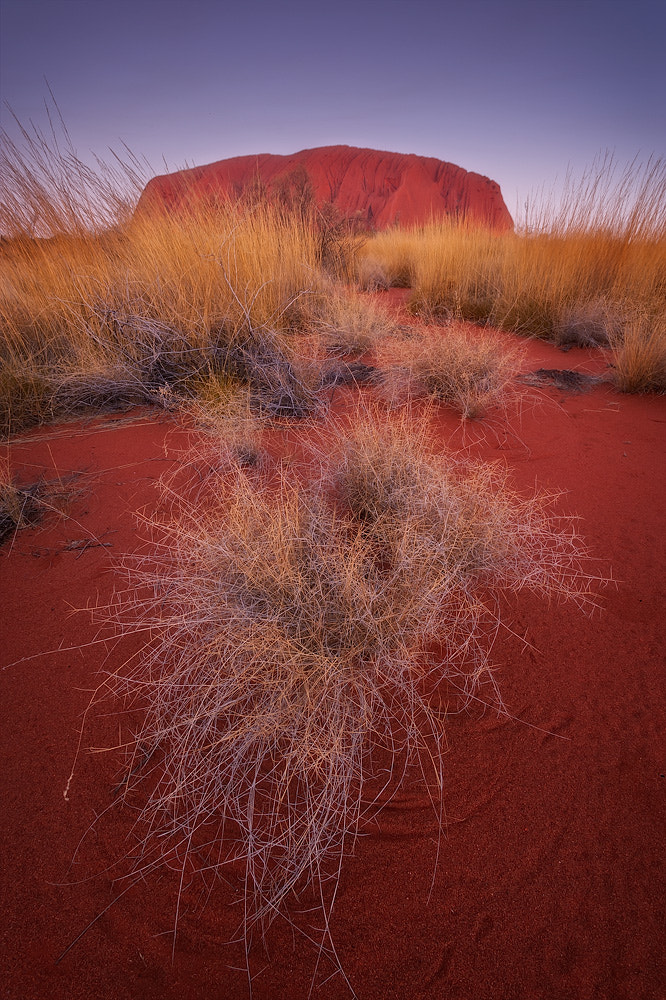 Photograph Sand and Stone by Hillary Younger on 500px