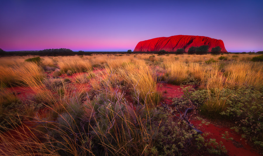 Photograph Welcome To The Rock by Dylan Gehlken on 500px