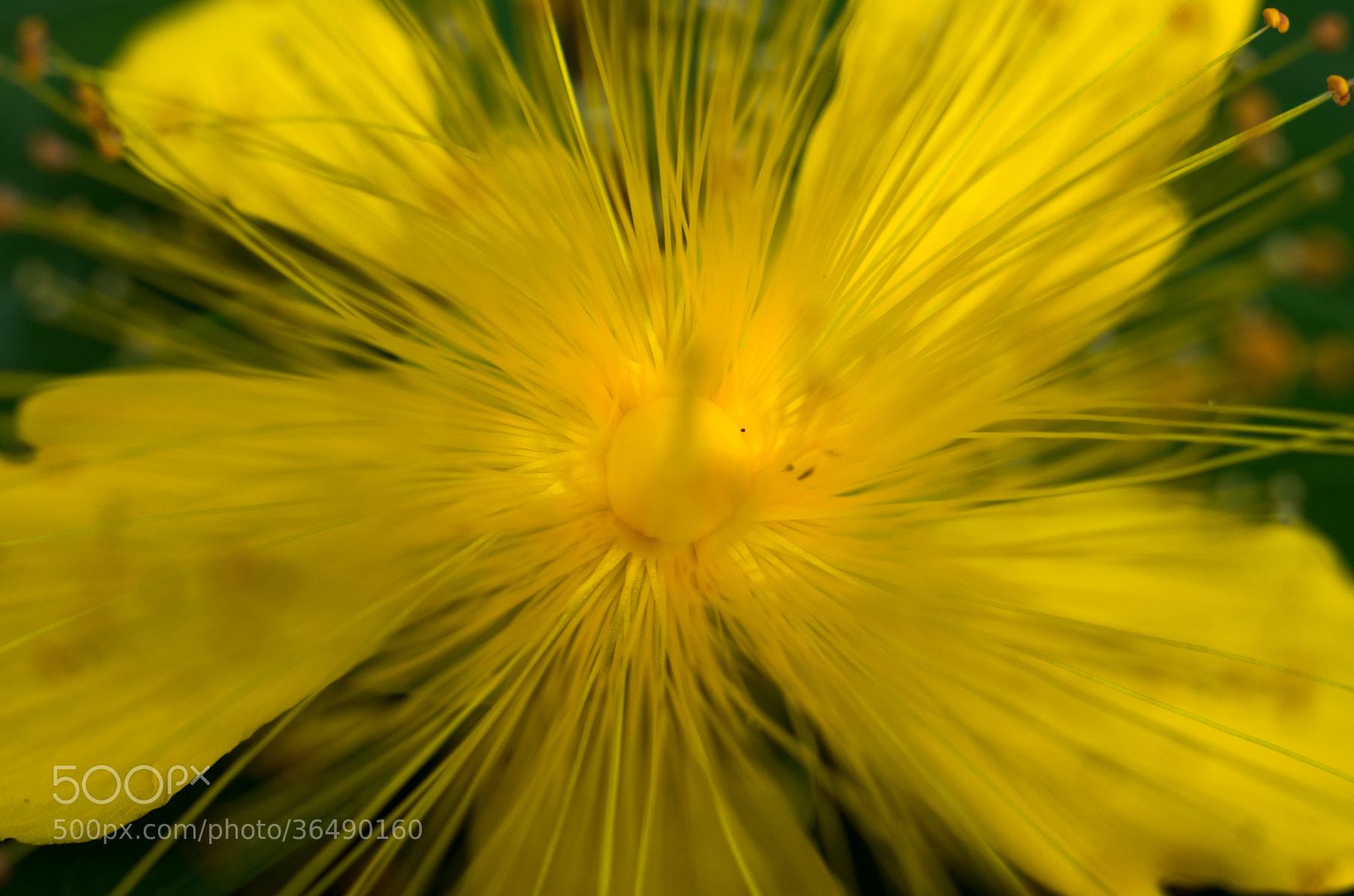 Photograph Big Bang by Naoyoshi Tamura on 500px