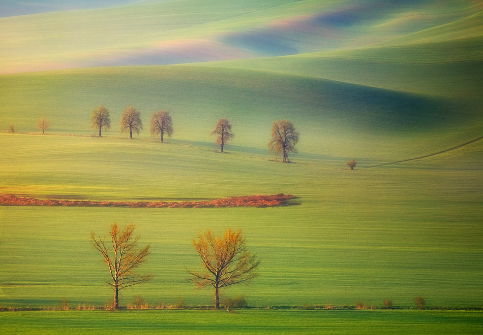 Photograph Spring... by Krzysztof Browko on 500px