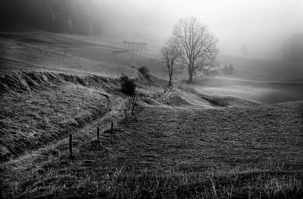 Photograph Countryside by Kristjan Rems on 500px