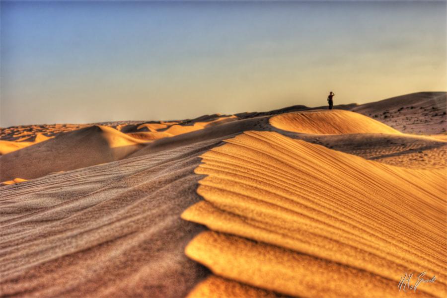 lost in the desert...