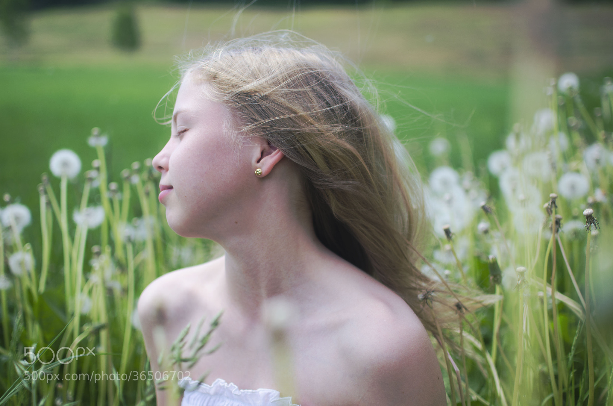 Photograph Wind in your hair  by Malin Bengtsson  on 500px