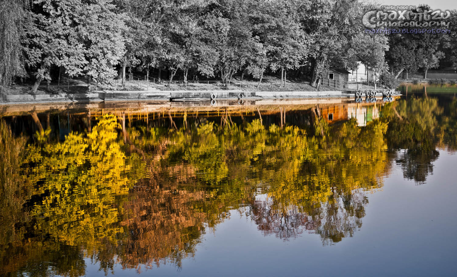 Photograph Reflections by Mihai Maxim on 500px