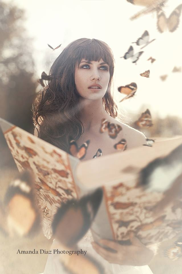 Photograph Lost Butterfies  by Amanda Diaz on 500px