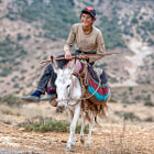 Постер, плакат: Young Iranian shepherd riding donkey