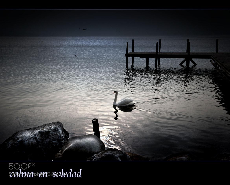 Photograph calma en soledad by Mayte Weber on 500px