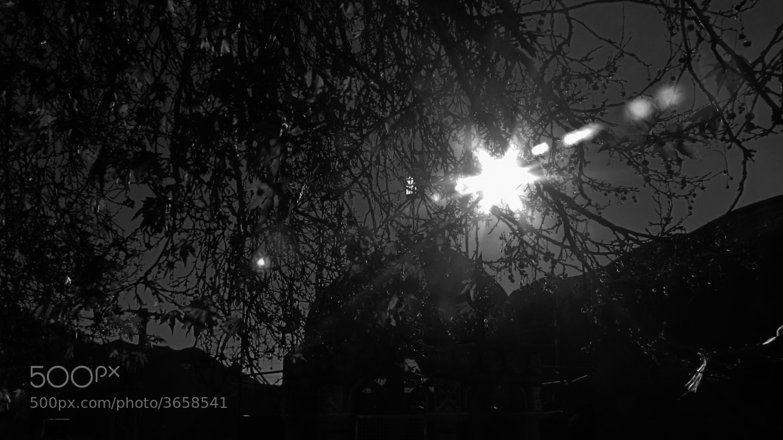 Photograph sun by payam p on 500px