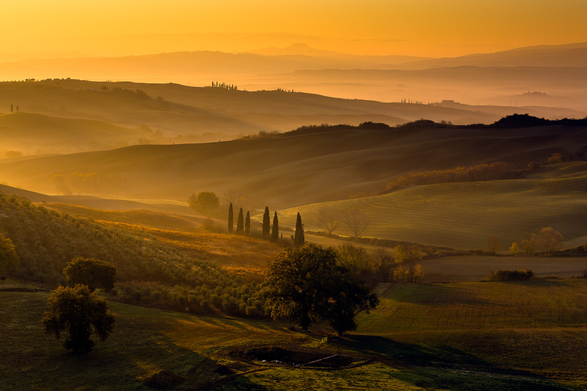 Photograph Golden Light in Val d'Orcia, Tuscany by Hans Kruse on 500px