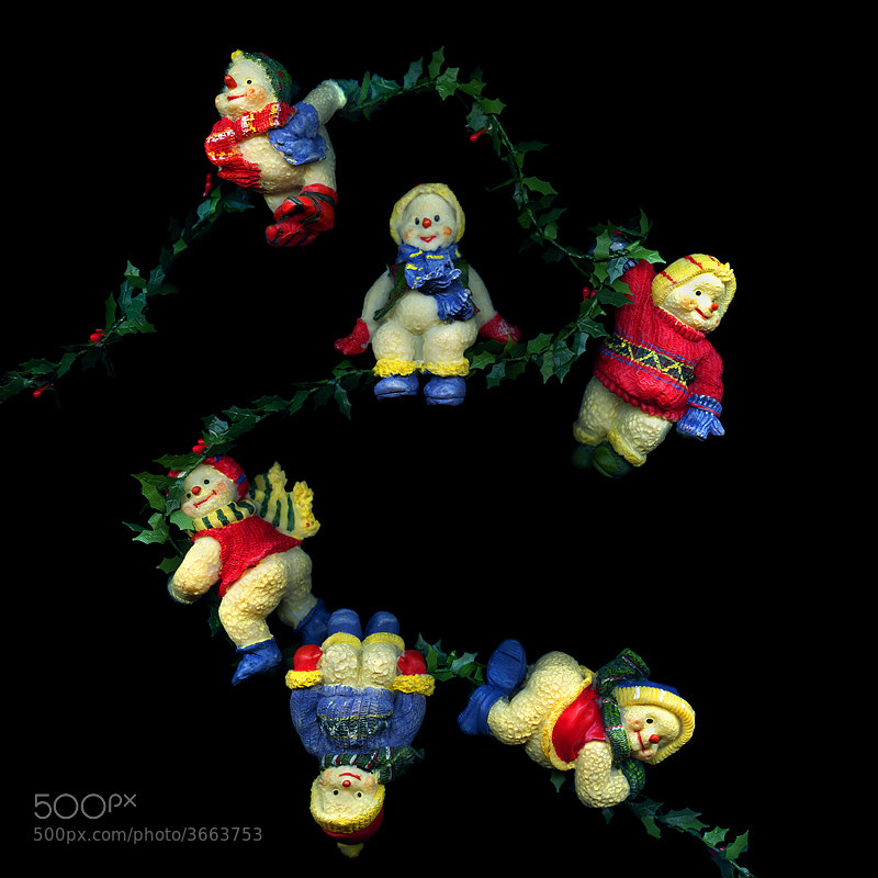 Photograph  MY HAPPY WINTERBABIES... A CHRISTMAS THEME. by Magda Indigo on 500px