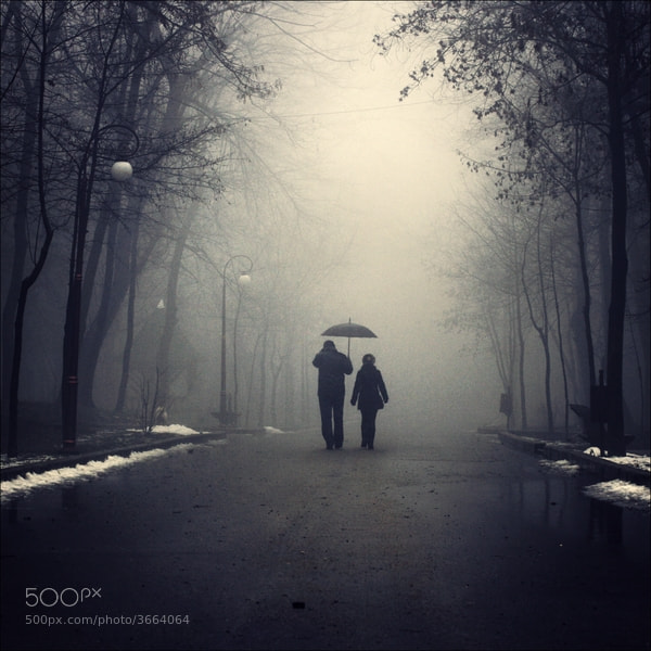 Photograph Winter me gently by Felicia Simion on 500px