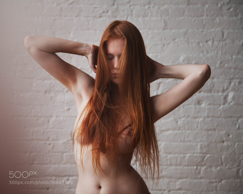 Photograph Untitled by Brandon Witzel on 500px