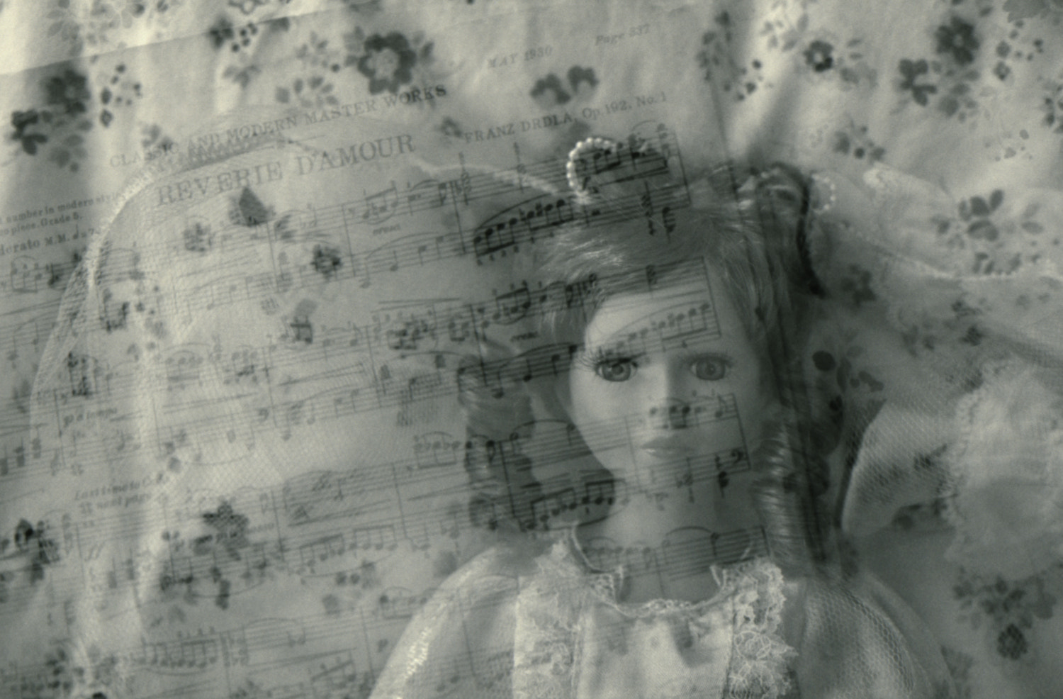 Photograph Reverie by Britta Hershman on 500px