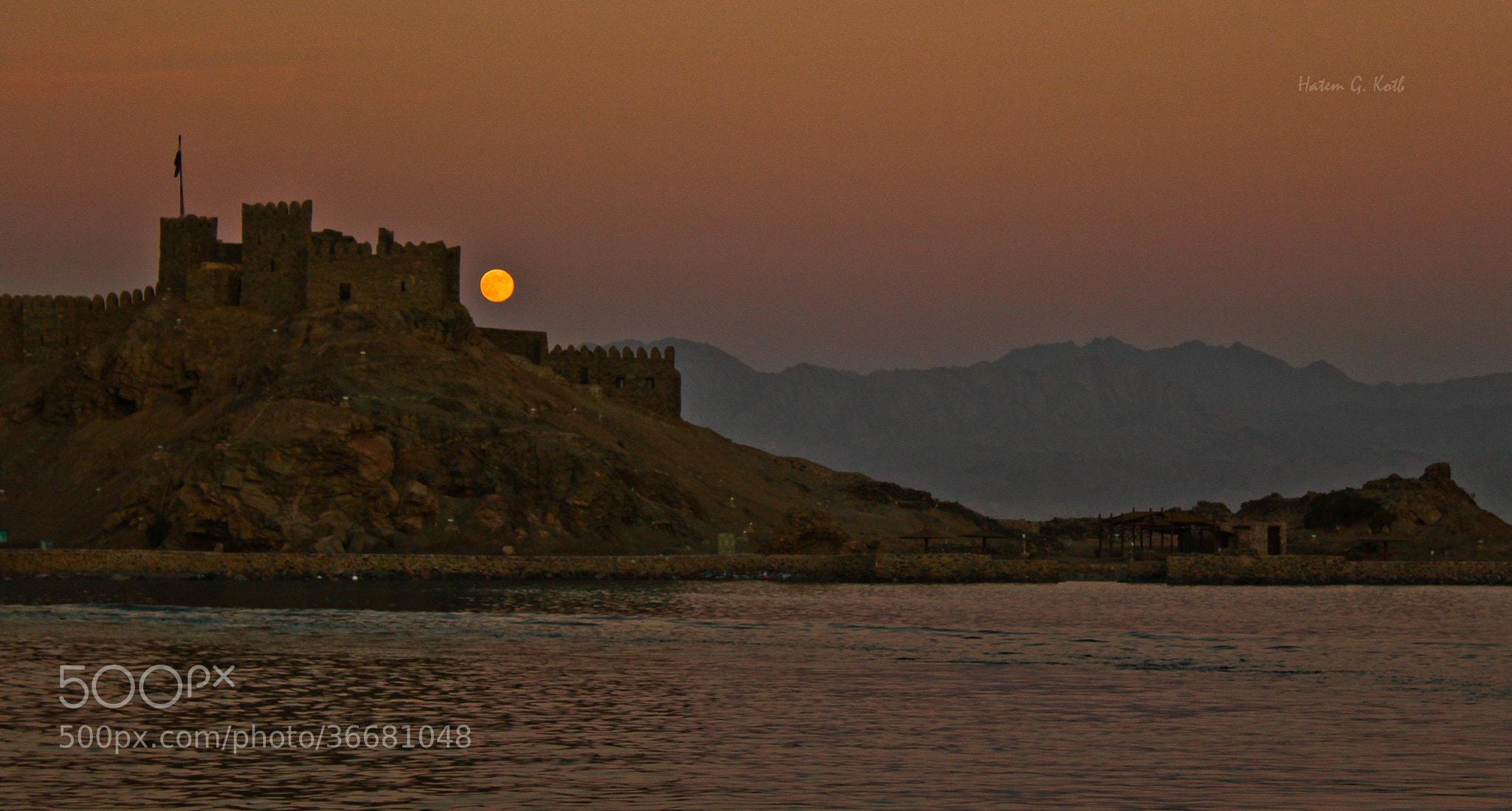 Photograph Beautiful Kingdom by Hatem Kotb on 500px
