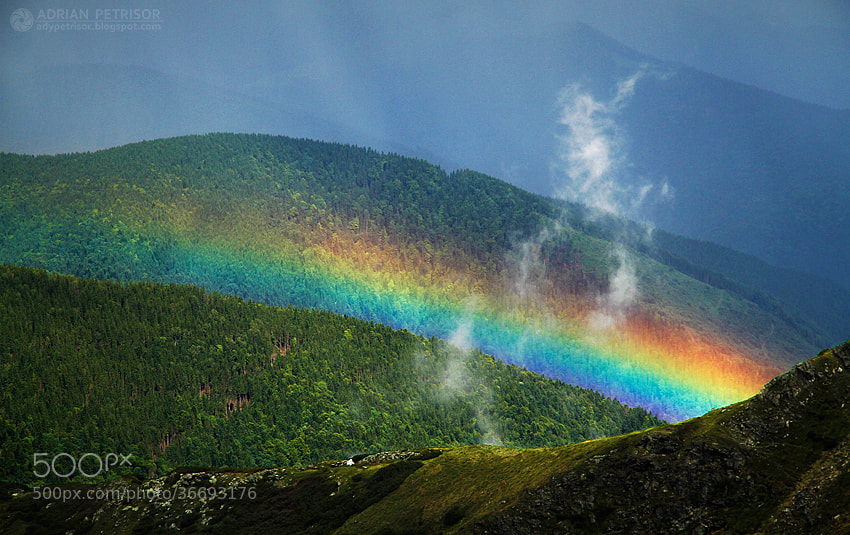 Photograph Colorful light by Adrian Petrisor on 500px