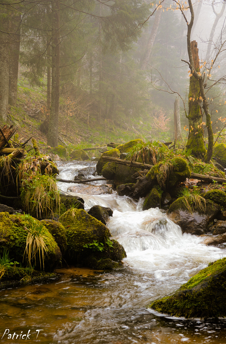 Photograph Small  river by Terschlusen Patrick on 500px