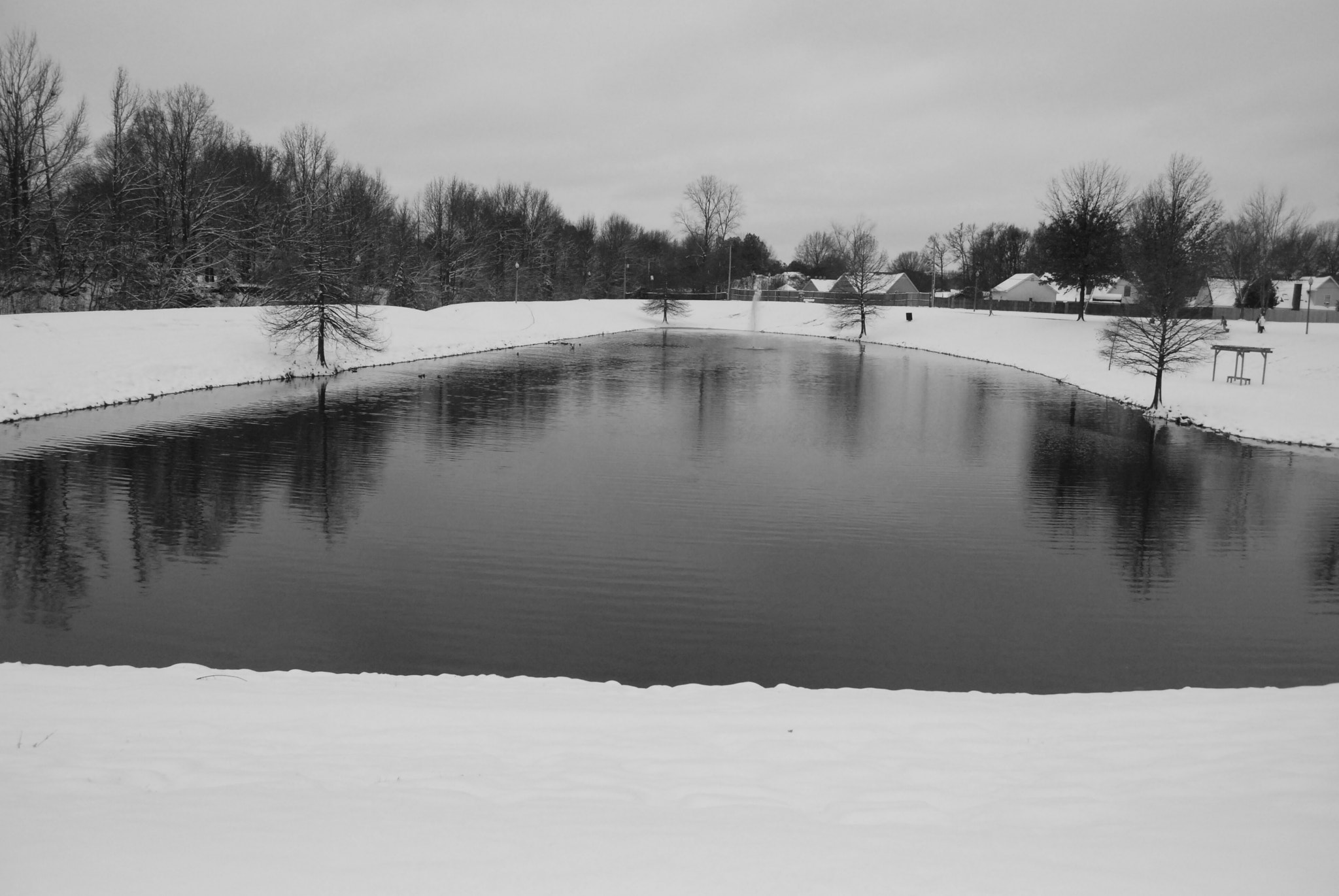 Photograph Park in Winter by Kevin Crosby on 500px