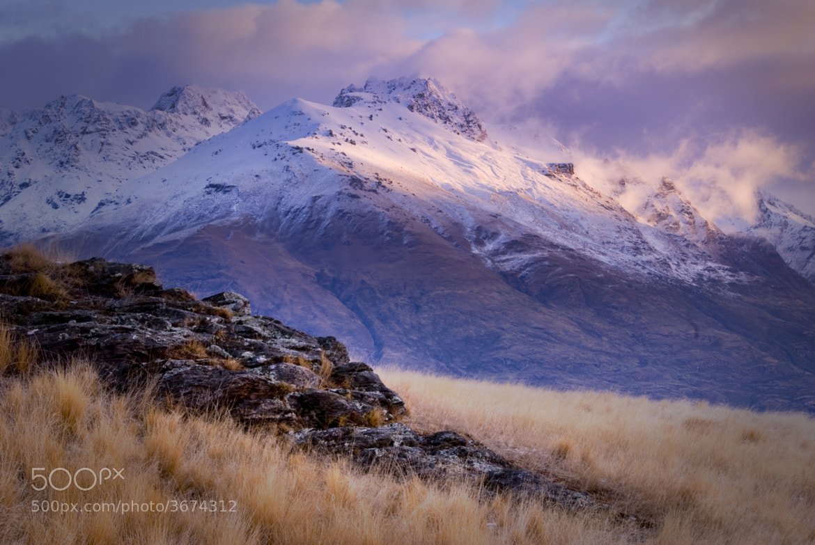 Photograph Colours of Otago by Nathan Kaso on 500px
