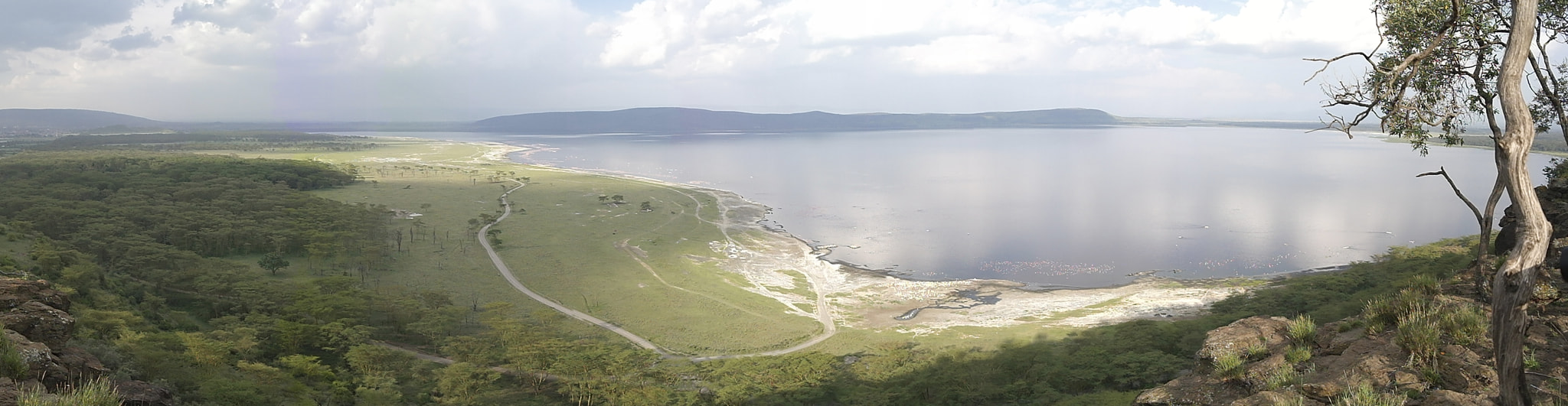 Photograph Lake Nakuru Panoramic  by Andrew Pickles on 500px