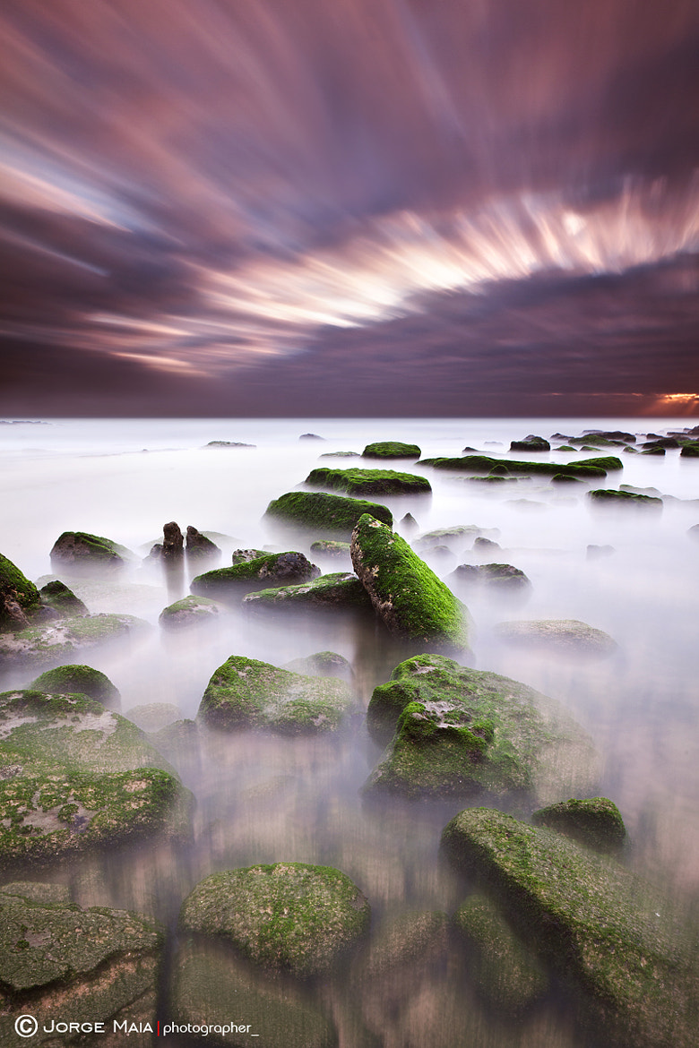 Photograph Green motion  by Jorge Maia on 500px