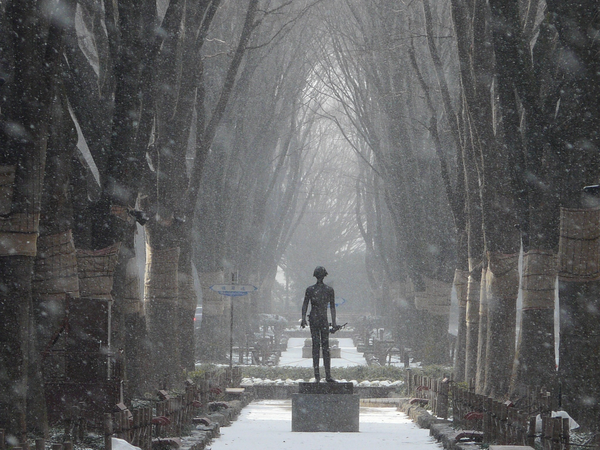 Photograph Statue in the snow by Martyn Sommer on 500px