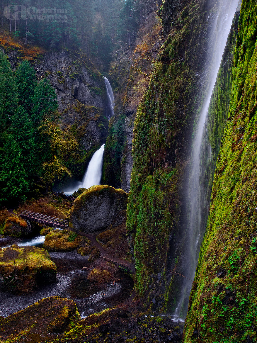 Photograph Wahclella Falls by Christina Angquico on 500px