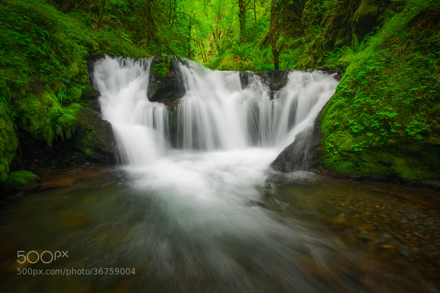 Photograph Emerald Trinity by Tyson Poeckh on 500px
