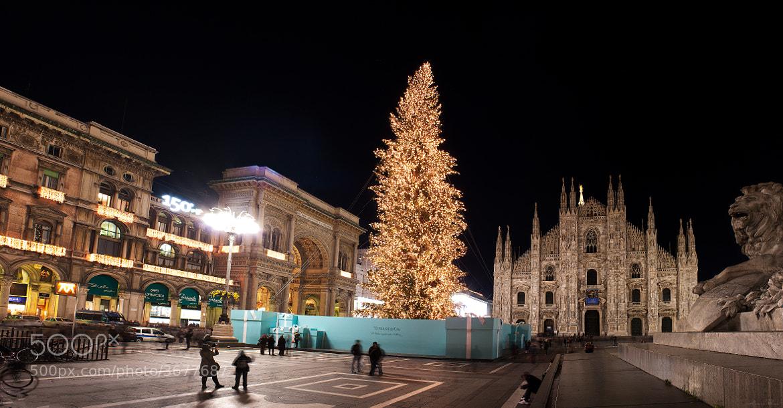 Photograph Milano Christmas by Alvaro Perez on 500px