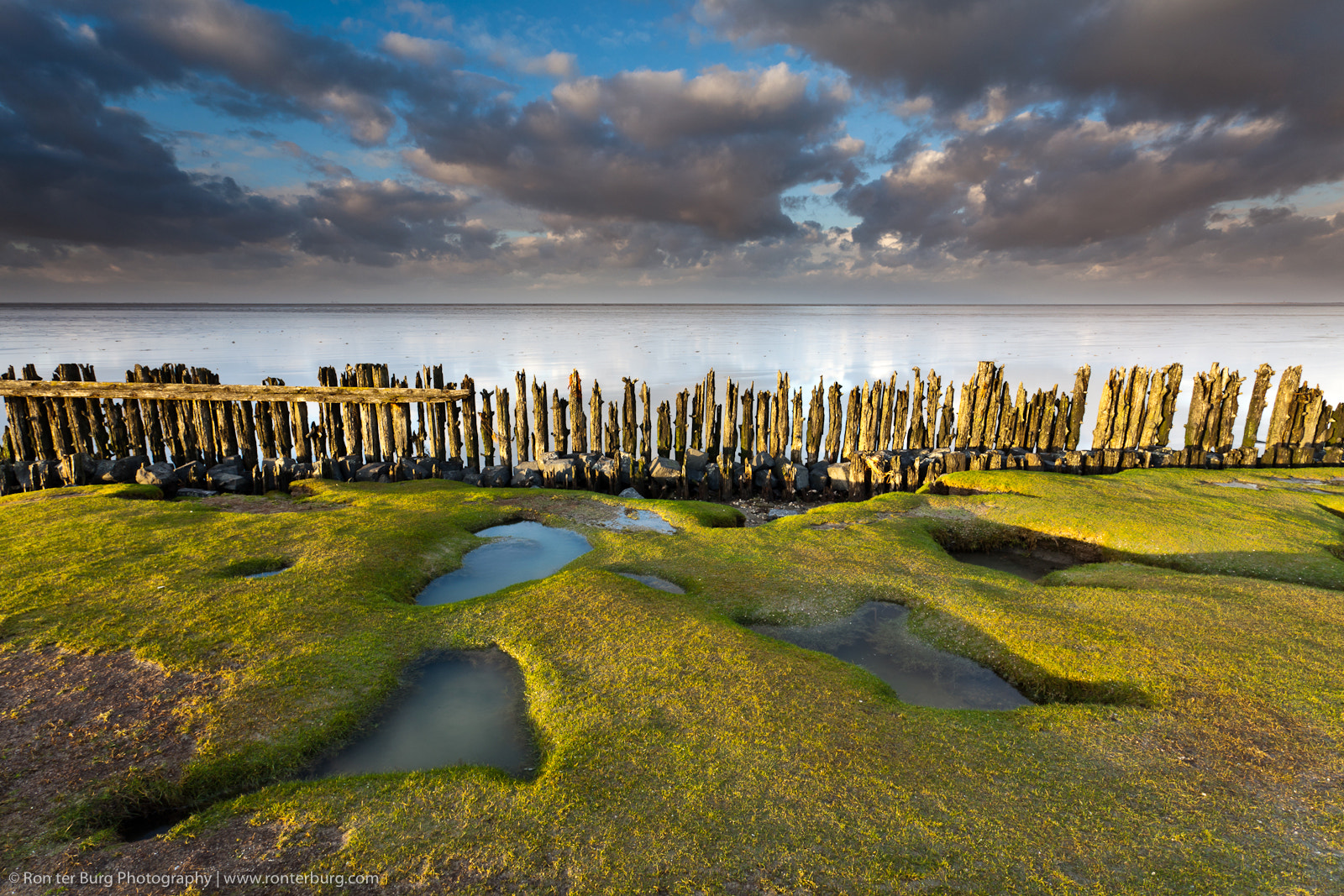 Photograph Seashapes at the Waddensea by Ron ter Burg on 500px