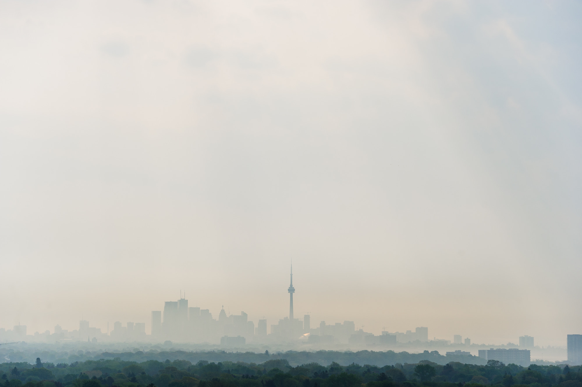 Photograph Toronto Skyline in Fog *5522 by Mark Shannon on 500px