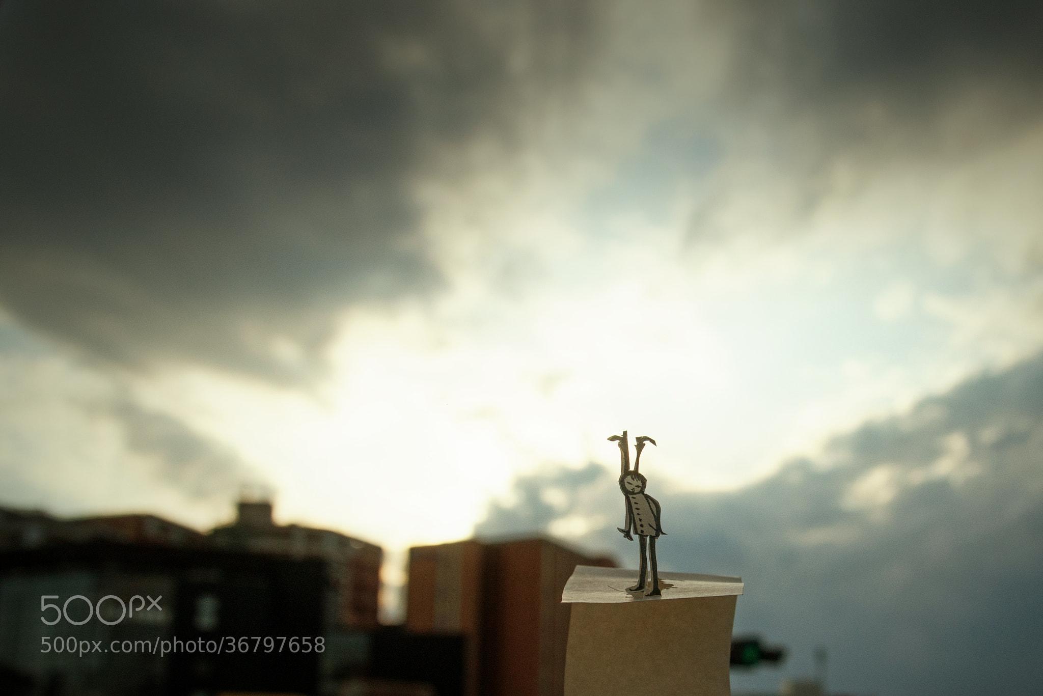 Photograph Untitled by Kouichi Chiba on 500px