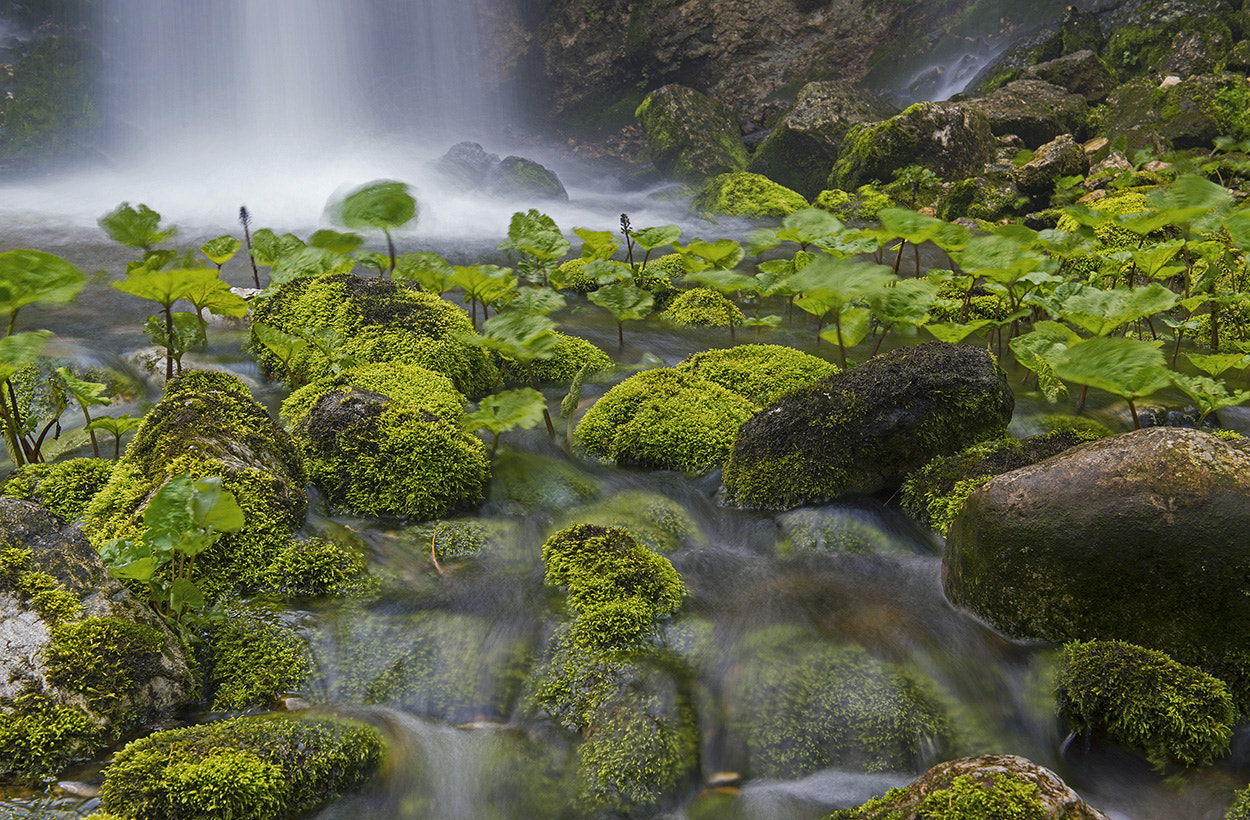 Photograph At the source II by Azman Miro on 500px