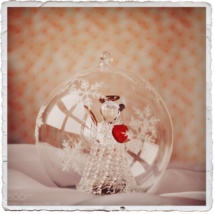 Photograph In the Christmas Mood. by Julia Dávila-Lampe on 500px
