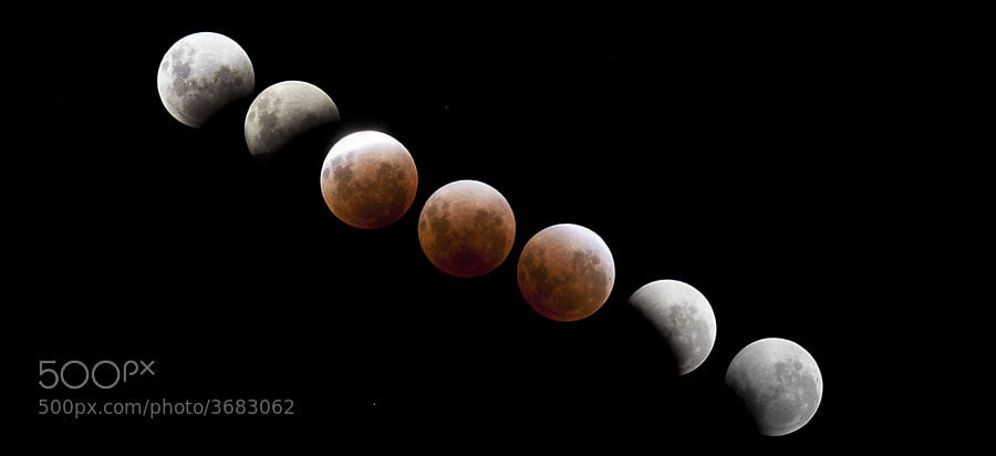 Lunar Eclipse from Perth, Western Australia.  It was a lucky night with clear skies providing an unobscured view of the entire eclipse.