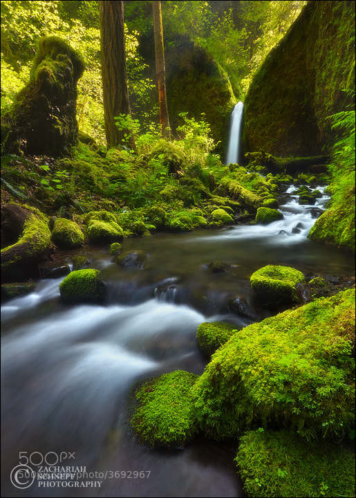 Photograph Paradise Falls by Zack Schnepf on 500px
