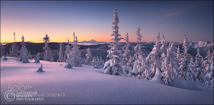 Winter Tranquility by Zack Schnepf (ZackSchnepf)) on 500px.com