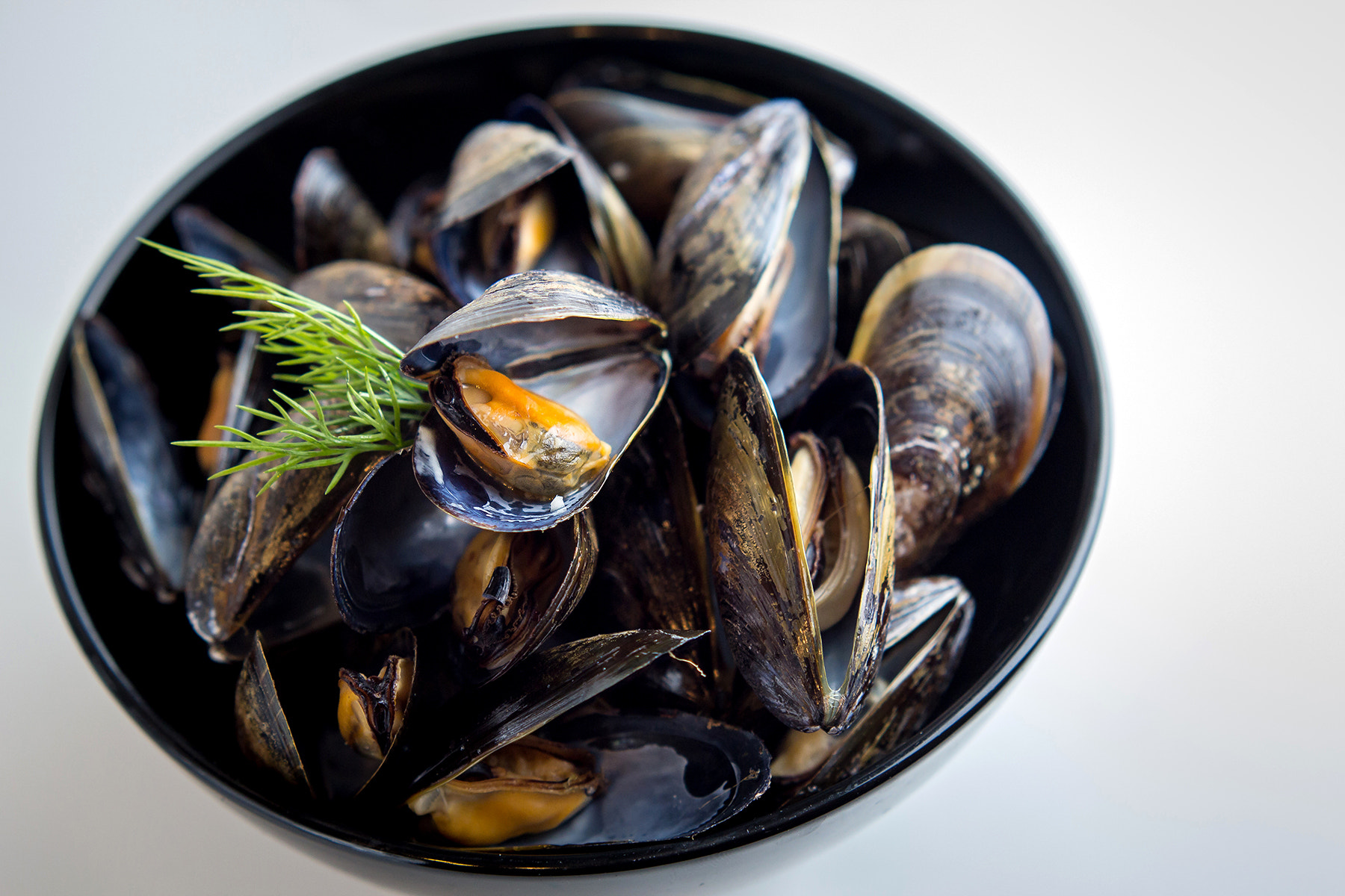 Photograph Steamed Mussels by Scott King on 500px