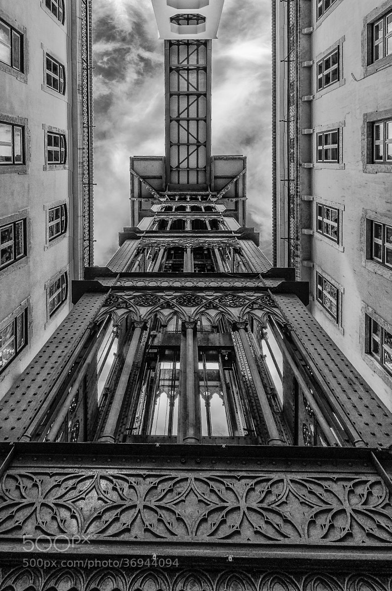 Photograph Looking up by Johnny Bravo on 500px