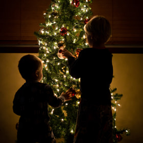 Decorating the Tree by Nick Roessler (loosh)) on 500px.com