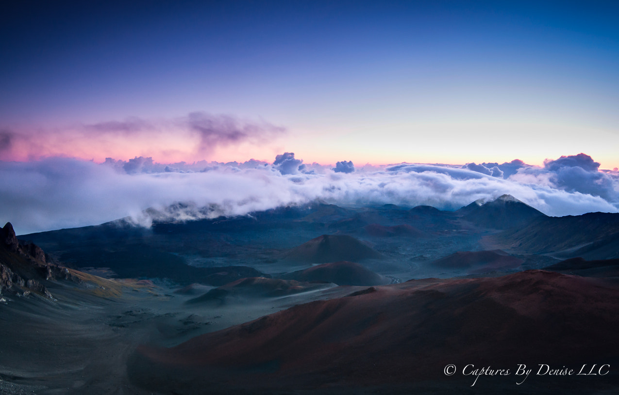 Photograph Heaven On Earth by Denise Santos on 500px